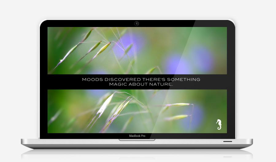Moods Digital Presentation